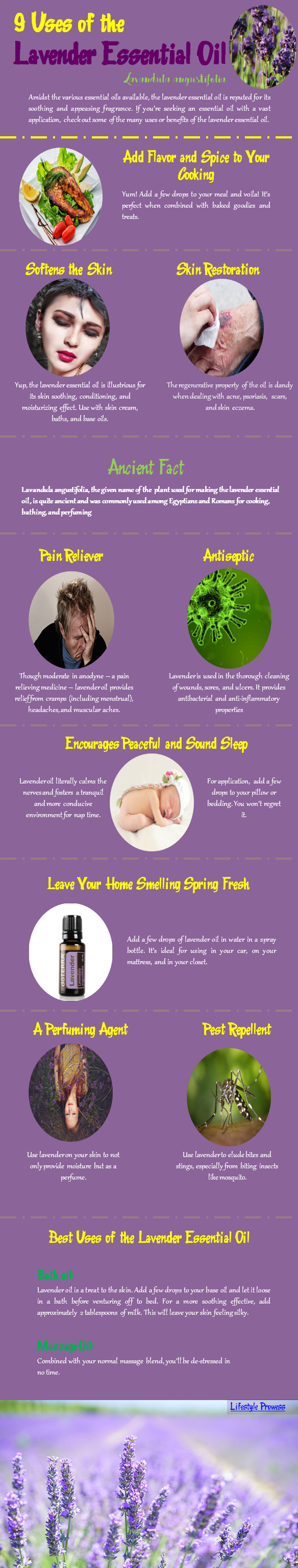 9 Uses of the Lavender Essential Oil
